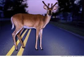 deeronroad