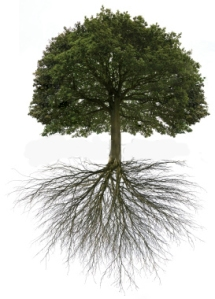 changetree